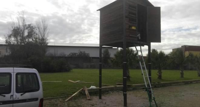 Bem-Estar Animal realiza a primeira captura de pombas para criação dos pombais ecológicos na Espanha