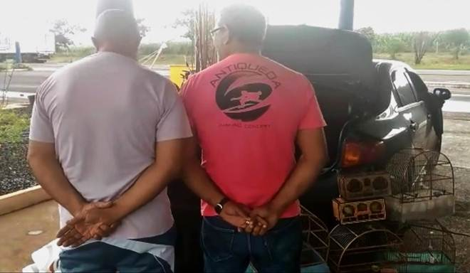 Dupla é presa por tráfico de animais em Itumbiara, GO