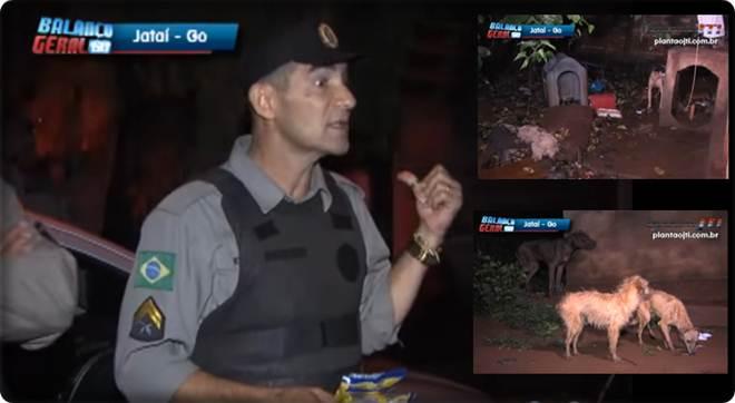 Policial leva ração na viatura e dá a cachorros encontrados com sinais de maus-tratos em residência em Jataí GO