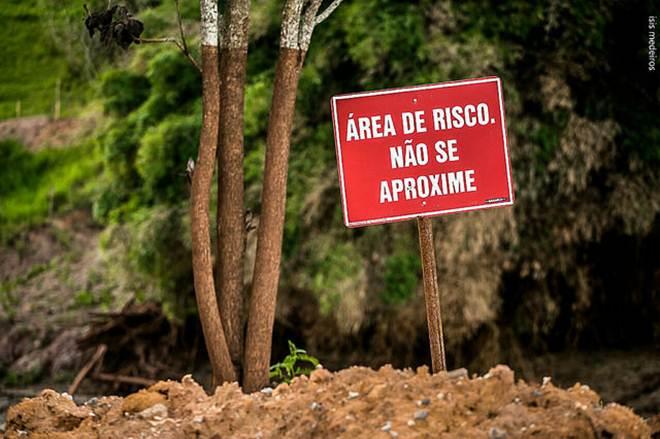 Surto de febre amarela, que tem matado macacos, pode estar ligado à tragédia de Mariana (MG), alerta bióloga