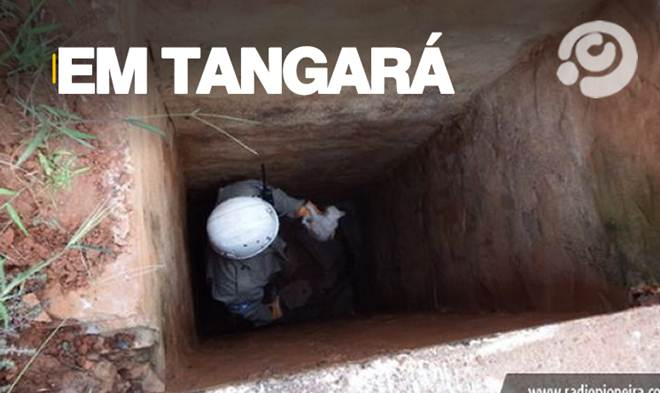 Resgate de filhote de gato em bueiro mobiliza equipe do Corpo de Bombeiros em Tangará da Serra, MT
