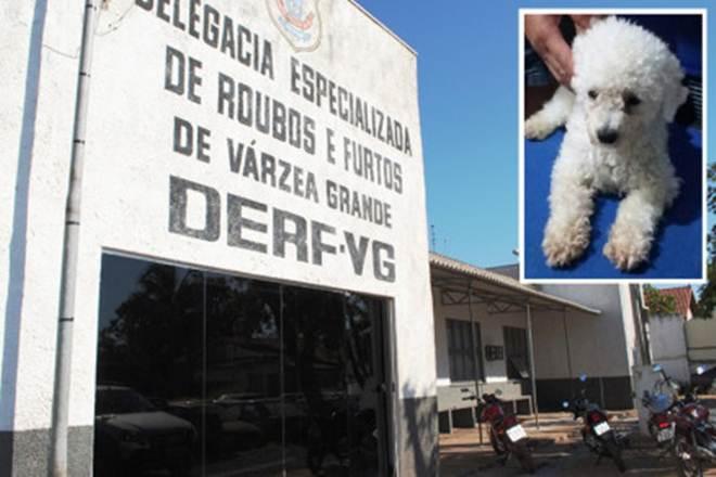 Polícia indicia mulher que estava vendendo cachorro sequestrado em Várzea Grande, MT