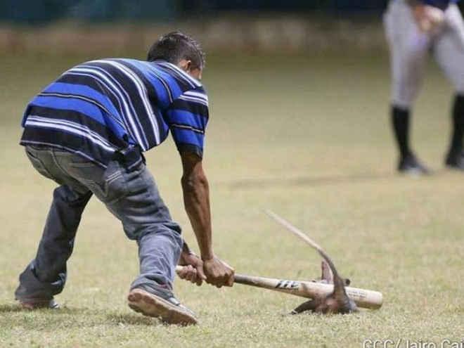 Vigília pelos animais é promovida após ataque a gambá em estádio na Nicarágua