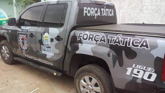 Polícia combate a caça ilegal de animais silvestres no interior do Piauí