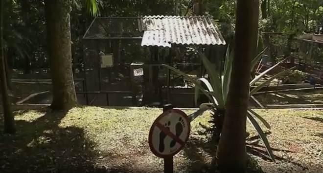 Por falhas na estrutura, Parque das Aves de Apucarana (PR) está fechado