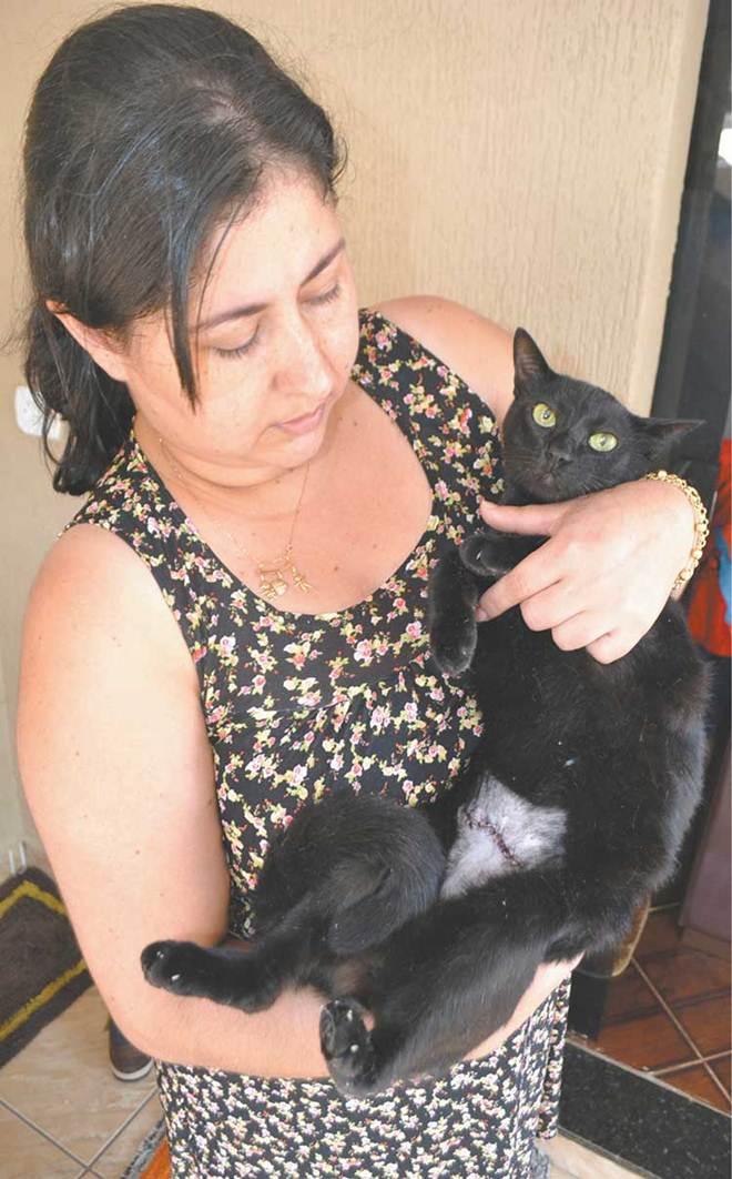 Mulher denuncia maus-tratos a gatos no Conjunto Mourão Filho, em Ivaiporã, PR