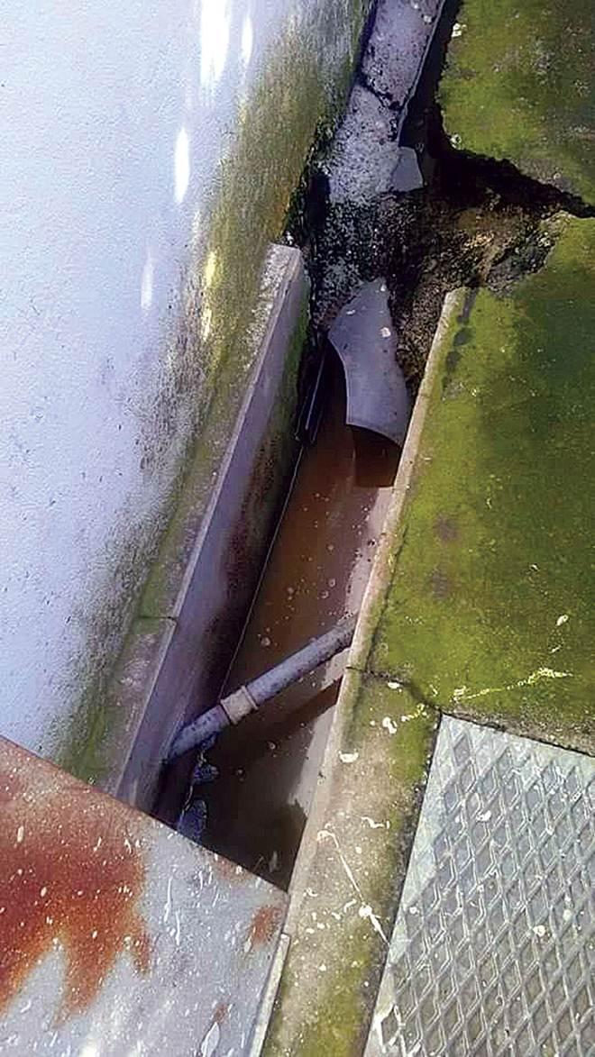 Canil Municipal sobrelotado sem condições de salubridade em Trofa, Portugal