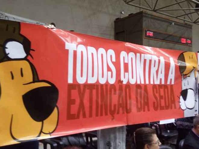 Vereadores extinguem Secretaria Especial dos Direitos Animais de Porto Alegre, RS