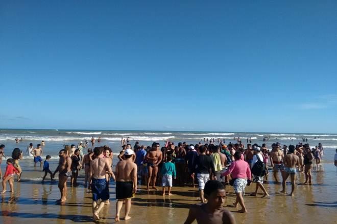 Biólogo alerta banhistas sobre animais mortos nas praias em Aracaju, SE
