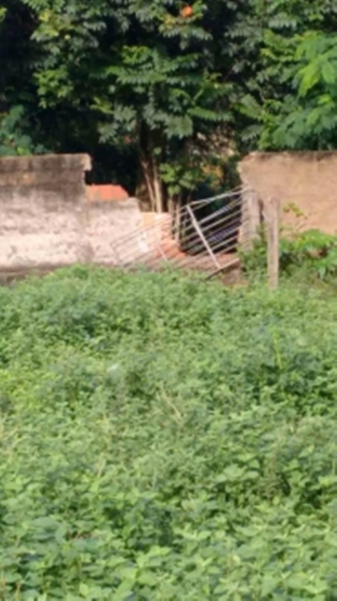 Ladrões atacam CCZ de novo e sequestram um potro e uma égua em Bauru, SP