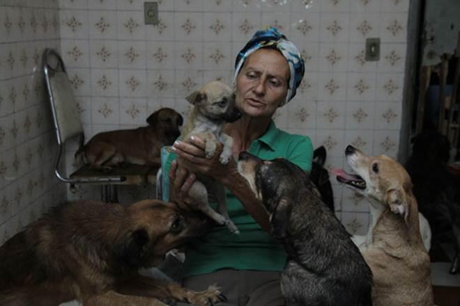 Diarista pede ajuda para manter cuidados a 120 animais em Mogi das Cruzes, SP