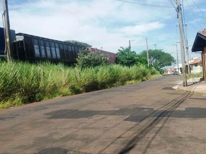 Cachorro é amarrado a trilho de trem e morre degolado em São Carlos, SP