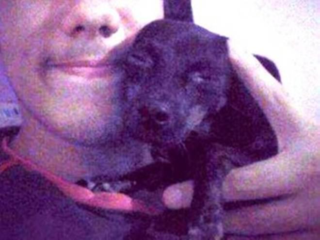 São Carlos (SP) tem 3º assassinato de cão em 5 dias e grupo oferece recompensa