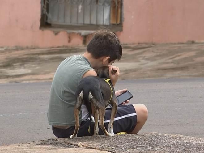 Polícia investiga morte de animais por envenenamento em Vera Cruz, SP