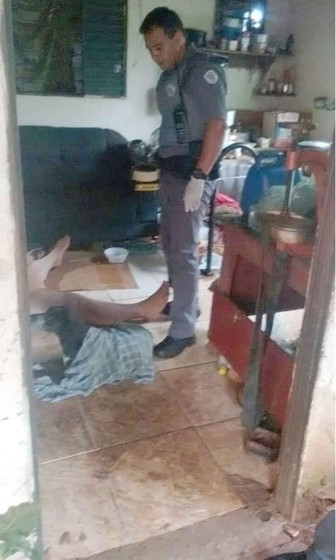 Homem flagrado fazendo sexo com cadela é preso em Andradina, SP