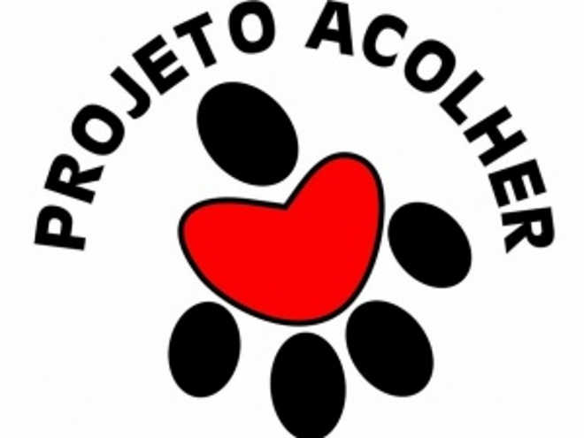 ONG responsável por 200 animais faz rifa para não fechar as portas, em Maceió, AL