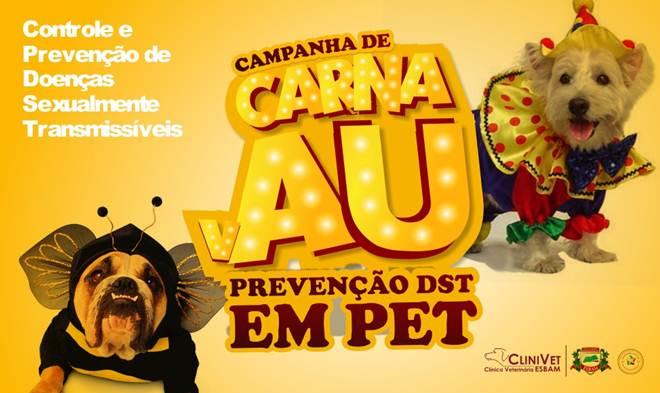 Prevenção de DST é tema da campanha para cães e gatos em Manaus, AM