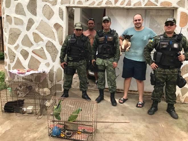 Batalhão Ambiental do AP resgata cães e gatos mantidos em gaiolas