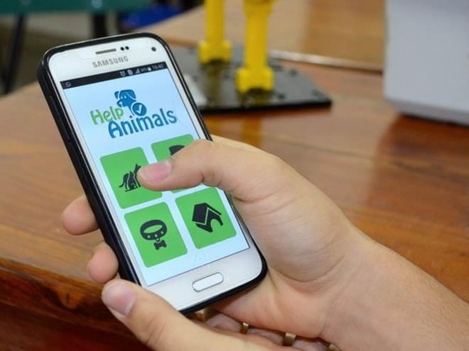 Aplicativo feito por estudantes do AP busca tutores para cães abandonados
