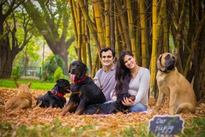 Aconselhado a doar cães, casal respondeu com ensaio de fotos