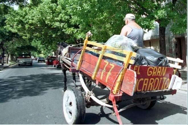 Anunciada a proibição de carroças puxadas por animais e a utilização de chicotes em cidade argentina