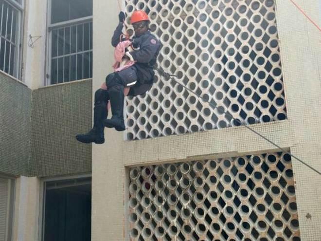 Bombeiros escalam prédio para resgatar gato 'fujão' em sacada na BA