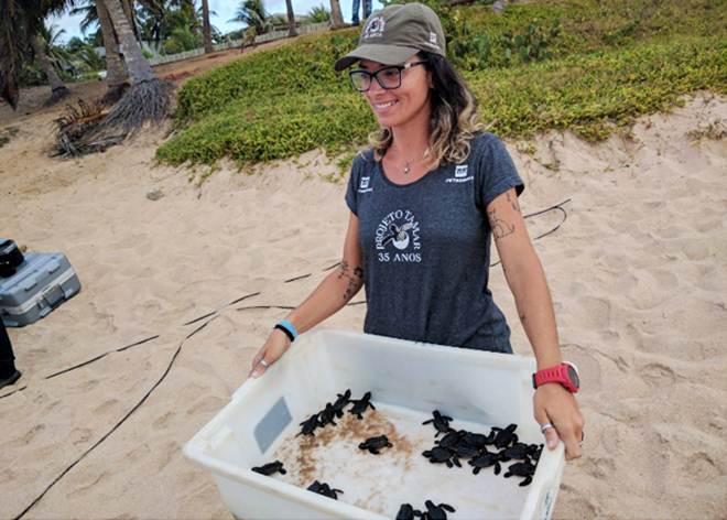 Tartarugas são soltas na praia de Itapuã, em Salvador, BA; veja vídeo