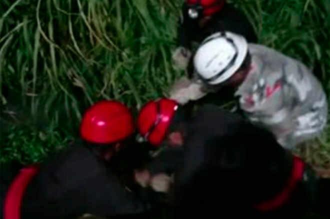 BA: Guarnição de Bombeiros Voluntários de Salvador é especializada em resgate de animais