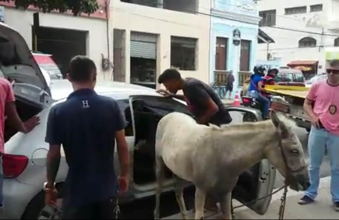 Suposto tutor de burro chora ao saber que o animal foi maltratado