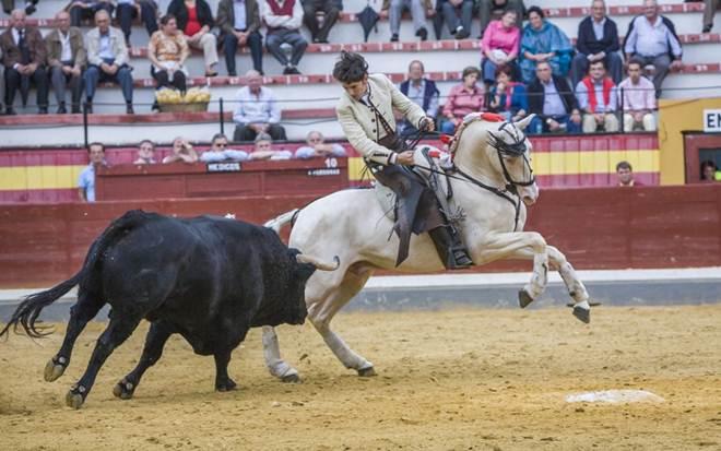 Cavalos vendados, silenciados e impedidos de escutar em touradas
