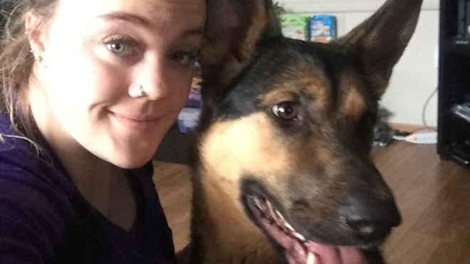 Cão escapa de abrigo para tentar encontrar mulher que o alimentou uma única vez