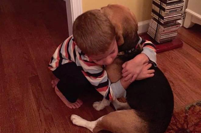 Garotinho abraça antigo beagle de laboratório e então ele soube que sua vida de testes acabou de uma vez por todas