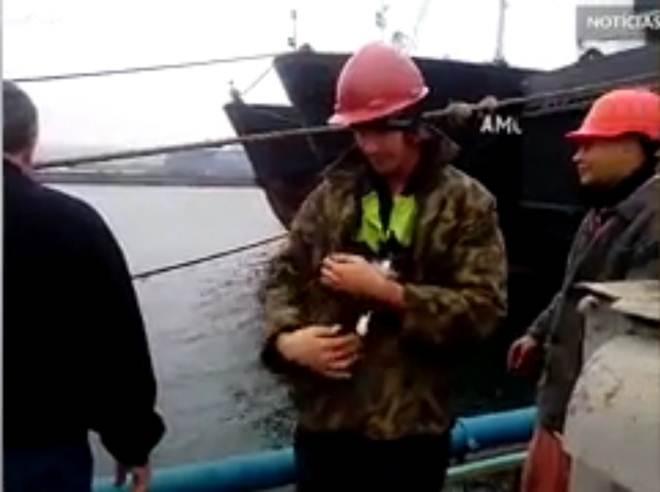 Estas pessoas salvaram um gato 'preso' na popa de um navio