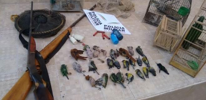 Homem é preso com dezenas de pássaros mortos e animais em risco de extinção em Cristália, MG