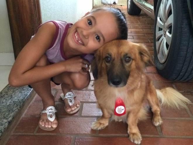 Cão que andou 5 km até família morre em ataque de cobra e vira herói em MS