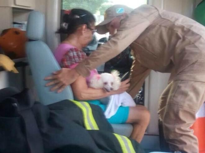 Cadela é resgatada debaixo de cama durante incêndio em Três Lagoas, MS