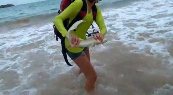 Turista ataca tubarão em Fernando de Noronha e leva mordida