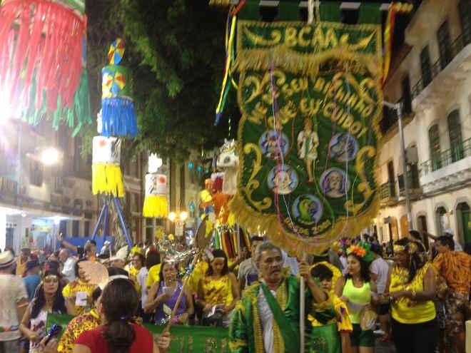 Bloco conscientiza foliões sobre cuidados com animais e natureza em Recife, PE