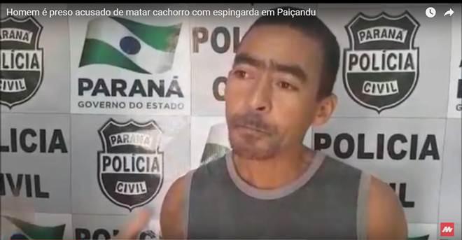 Homem é preso acusado de matar cachorro com espingarda em Paiçandu, PR