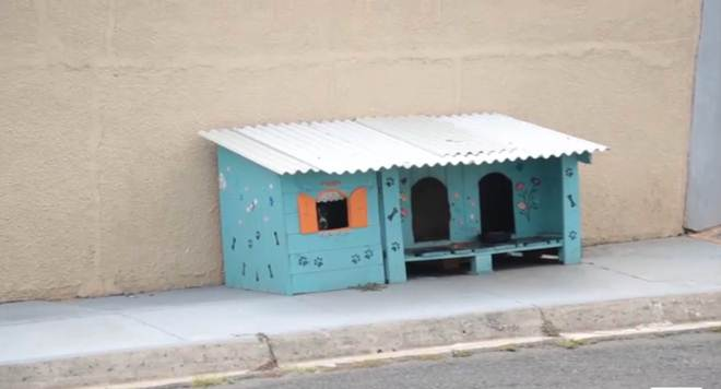 'Cãodomínios' são instalados em bairros de Ponta Grossa, PR