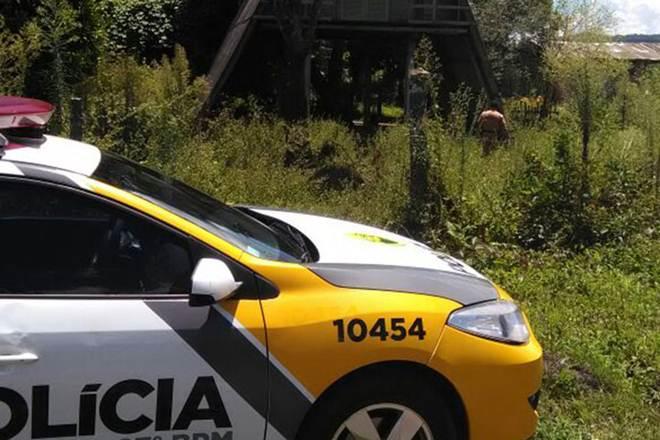 PM registra B.O. por maus-tratos a cão em União da Vitória, PR