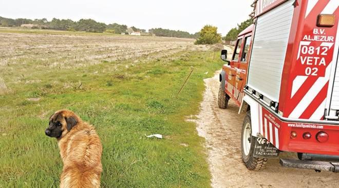 Portugal: Bombeiros de Aljezur já resgataram 5 animais