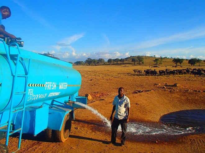 Homem viaja algumas horas todos os dias para dar água para animais selvagens