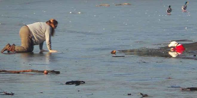 Em cena comovente, mulher se arrasta em lago gelado para salvar cão