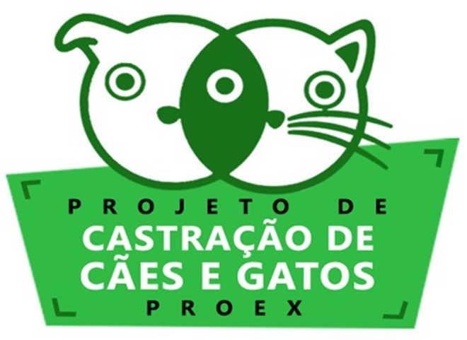 Centro de Zoonoses de Araçatuba (SP) castrou 918 animais no ano passado