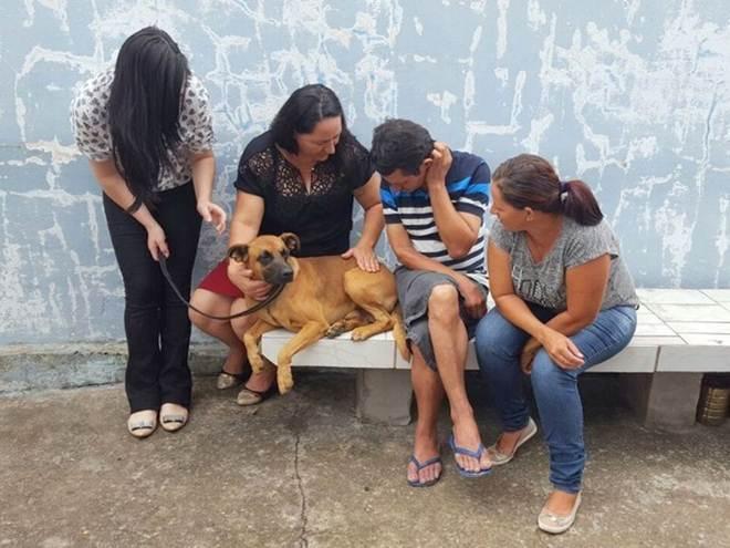 Cão que fez 'vigília' em hospital ajuda sem-teto a rever família após 10 anos