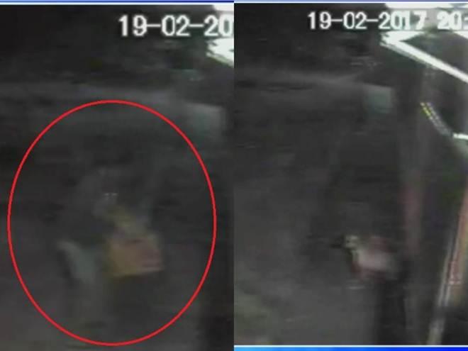 Câmera flagra abandono de cachorra e filhotes em ONG em Mairinque, SP