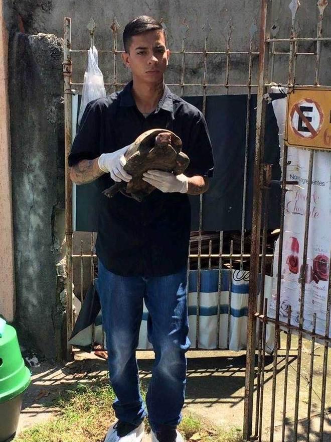 Animais são resgatados após sofrerem maus-tratos em São José dos Campos, SP