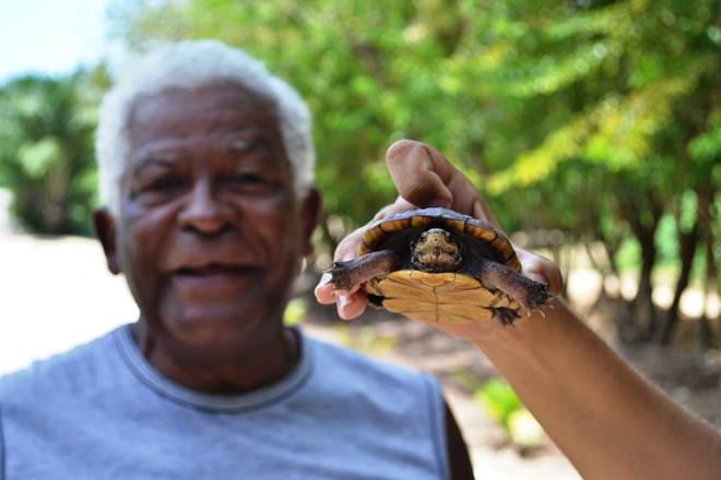 Parque Municipal de Maceió (AL) recebe e resgata animais silvestres