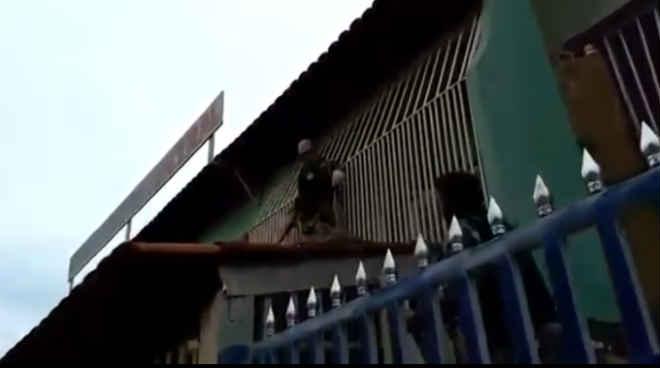PM resgata porco-espinho em telhado de casa no Recanto das Emas, no DF; vídeo